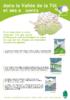 Fiche-construire_et_renover-tet.pdf - application/pdf