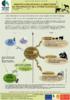 03-besoins-des-animaux.pdf - application/pdf
