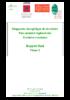 Rap_phase_2_Pyrcat-VF.pdf - application/pdf