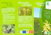 Ligulaire_de_siberie_01.pdf - application/pdf